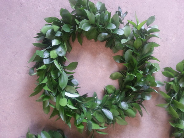 Italian Ruscus Wreath