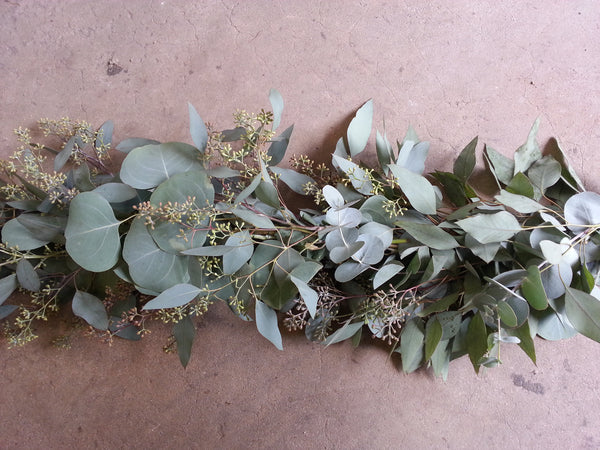 Seeded Eucalyptus And Silver Dollar Garland The Guy