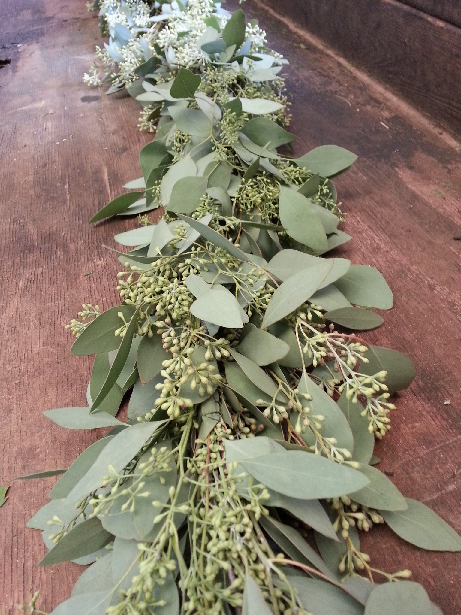 Seeded Eucalyptus Garland The Garland Guy