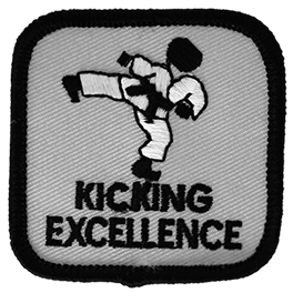 Kicking Excellence Intermediate Level