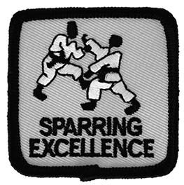 Sparring Excellence Intermediate Level