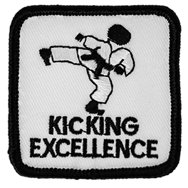 Kicking Excellence Beginner Level