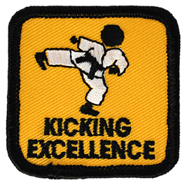 Kicking Excellence Advanced Level