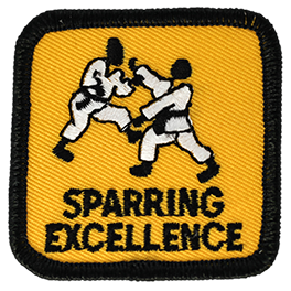 Sparring Excellence Advanced Level