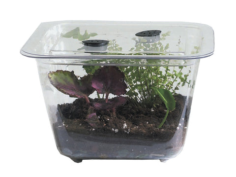 9434 STUDENT TANK W/COVER 1GAL EA