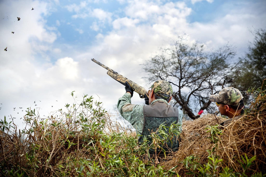 Dove Hunting Tips with Sillosocks
