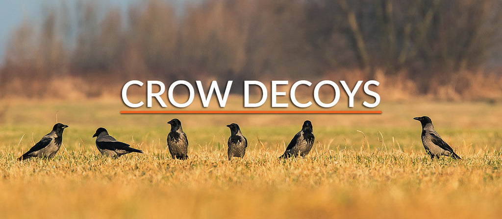 Crow Decoys