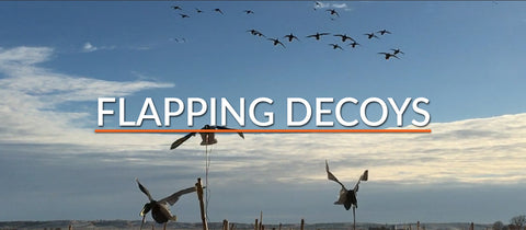 Flapping Decoys