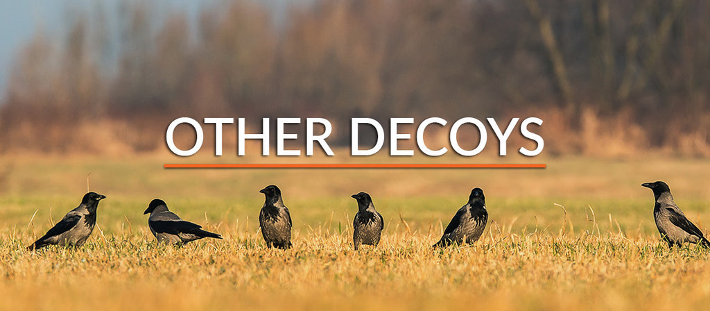 Other Decoys