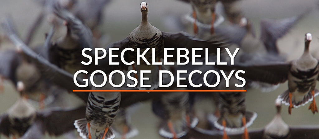 Specklebelly Goose Decoys