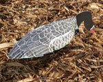 Feeder Specklebelly Goose Windsocks - Dozen