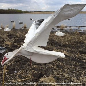 Wingbeat Snow Goose Power Flapper