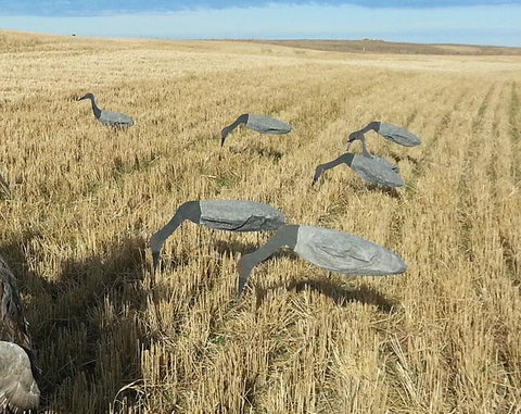 Hunting with six sandhill crane windsock decoys in a field