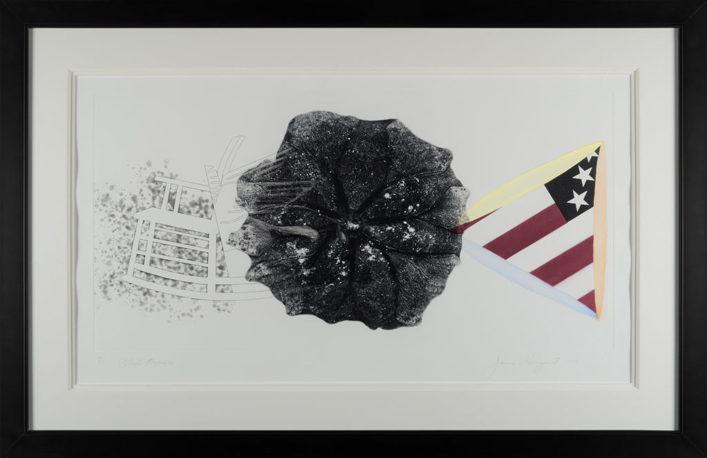 james_rosenquist_black_triangle_state_i