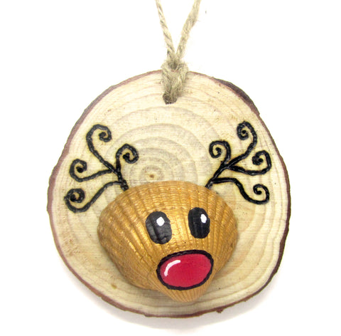 Rudolph the Reindeer - Cockle Shell Christmas Tree Decoration (No. 942)