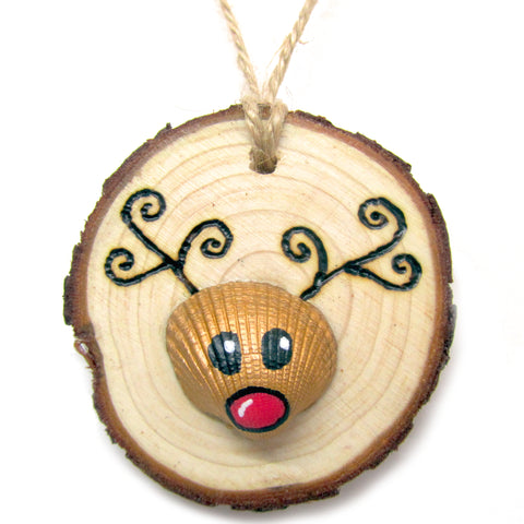 Rudolph the Reindeer - Cockle Shell Christmas Tree Decoration (No. 988)