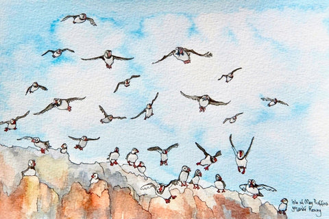 Flying Isle of May Puffins - Limited Edition Watercolour Print by Yolandé Kenny
