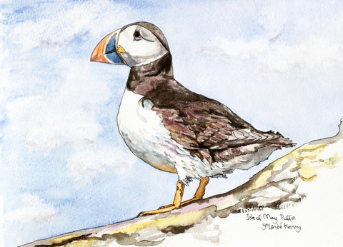 Isle of May Puffin (Profile) - Limited Edition Watercolour Print by Yolandé Kenny