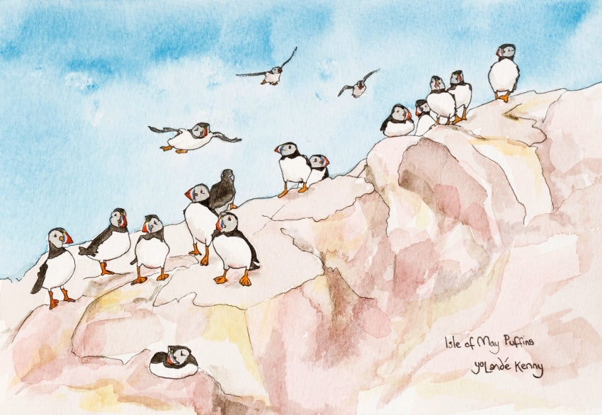 Isle of May Puffins on the Rocks - Limited Edition Watercolour Print by Yolandé Kenny