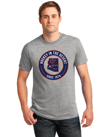 DYHA Hockey Men's Gray Retro T-Shirt