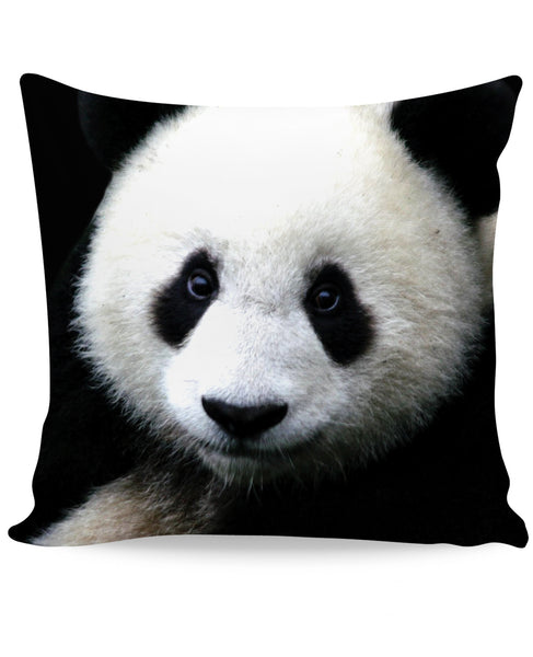 Panda Couch Pillow