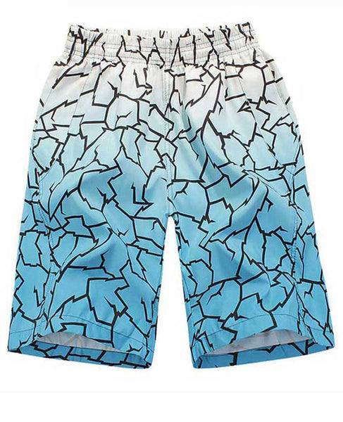 Cracked Boardshorts