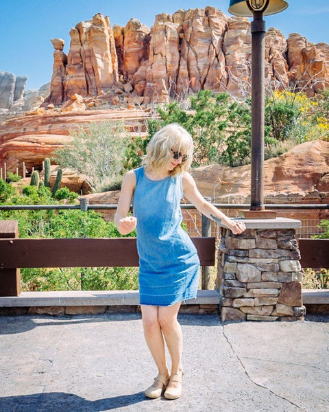 Gingerly Witty Dapper Day chambray dress