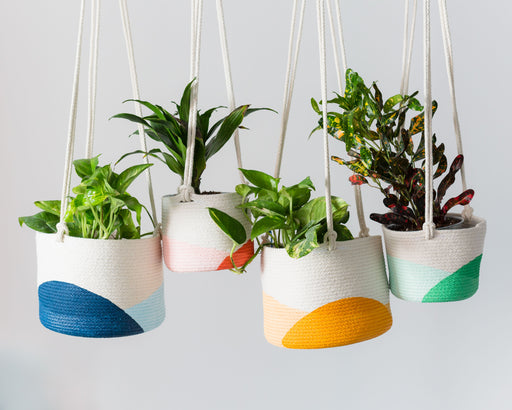 Hanging Rope Planter Small (6 inch), Closed Mondays - Gingerly Witty