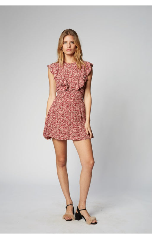 Remi Mini Dress in Dandelion Dreams. Flynn  Skye, Gingerly Witty