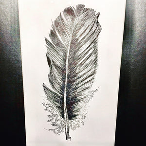POSTPONED-Learn To Draw Feathers - Pen + Ink