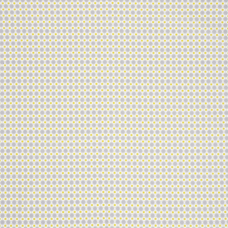 Schumacher Fabric 176551 Cosmos II Grey & Yellow