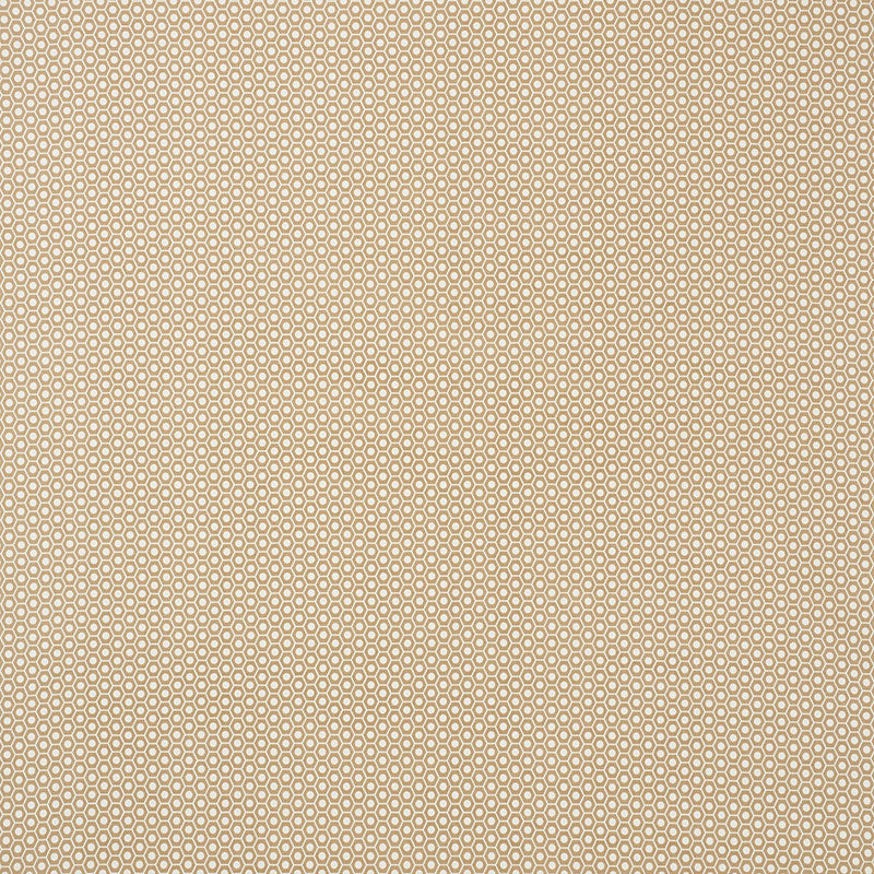 Schumacher Fabric 176561 Queen B II Sand