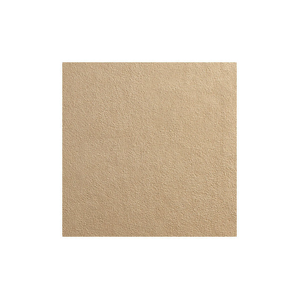 Scalamandre Fabric AB1000-505 Sensuede Biscuit - Inside Stores