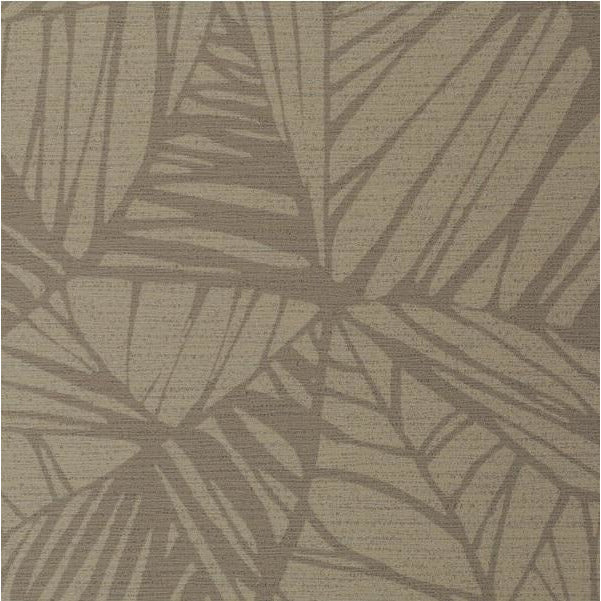 Winfield Thybony Wallpaper WHF3268.WT Phoenix Birch - Inside Stores