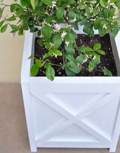 Build & Paint Planter Workshop Saturday May 2nd @11am
