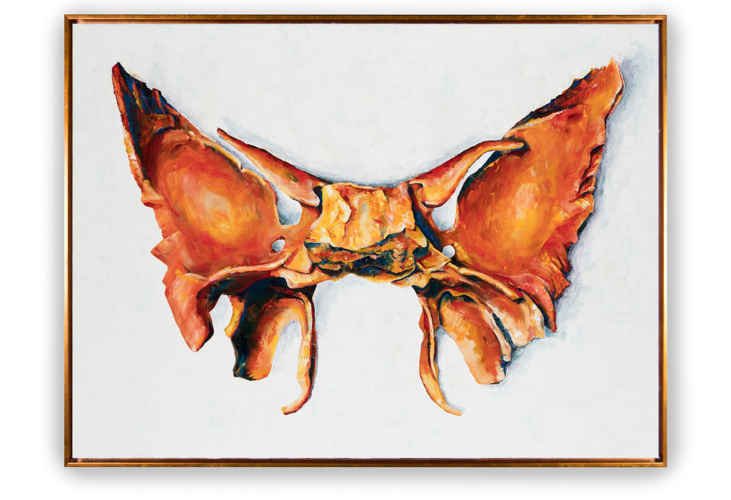 Sphenoid Painting