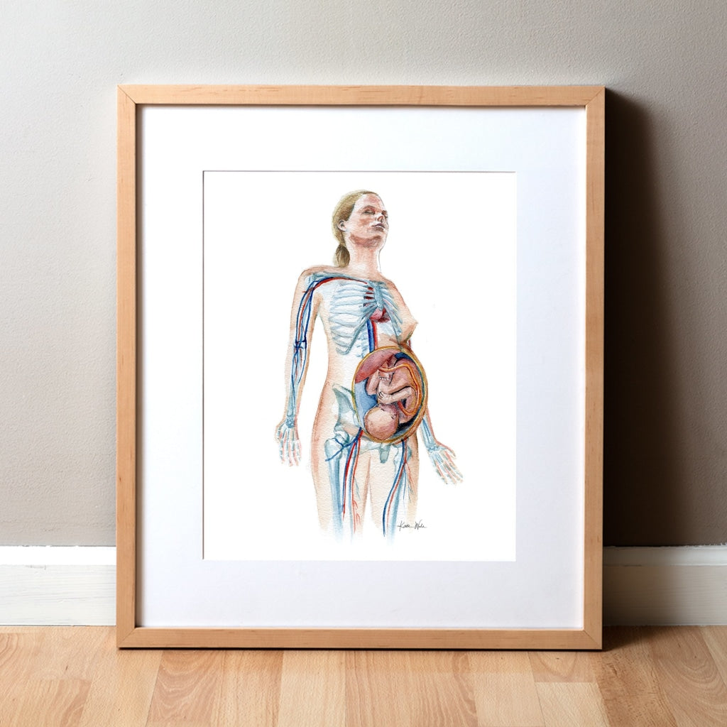 Pregnant Female Watercolor Print