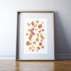 Blood Cells Print