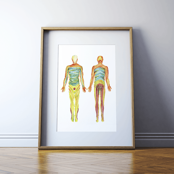 Dermatomes Watercolor Print