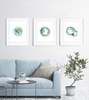 Embryo Set of 3 Watercolor Prints