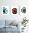 Blue, Brown and Green Iris Print Set