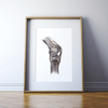 Knee Joint Anatomy Print