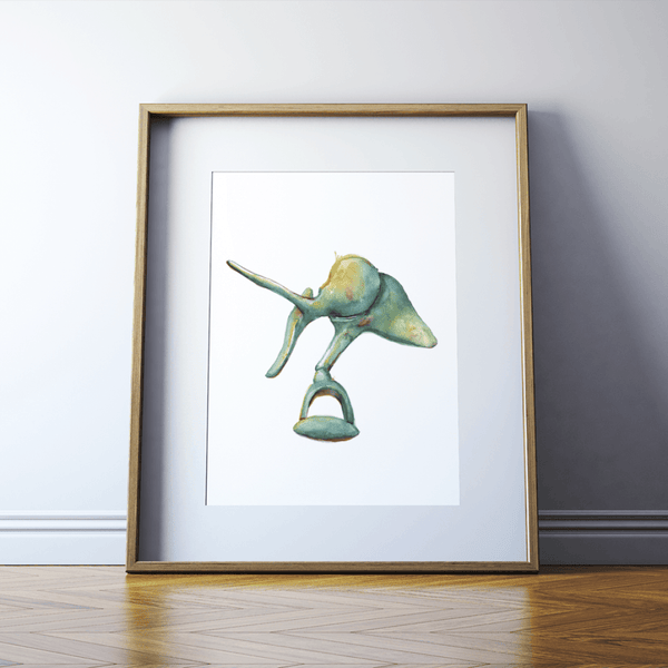 Ossicles Print