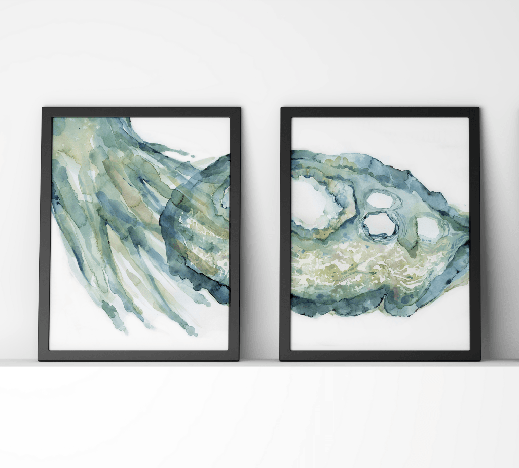 Ovary and Fimbriae Print Set