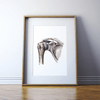 Shoulder Joint Anatomy Print