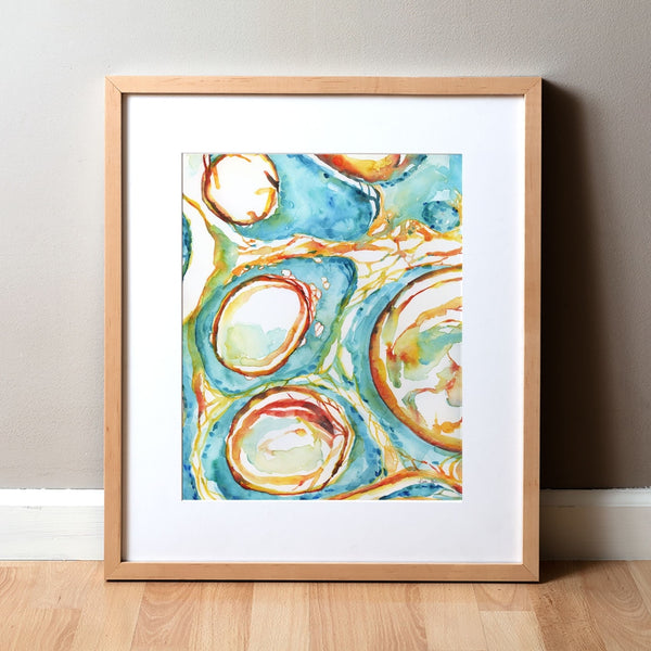 Trichodiscoma Watercolor Print