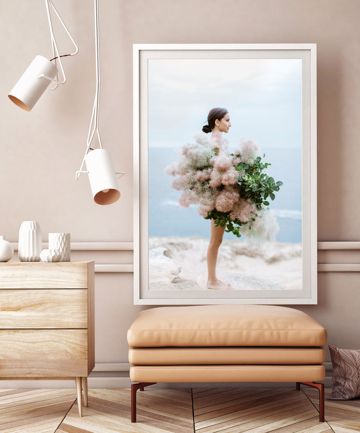 Smoke Bush Photographic Print