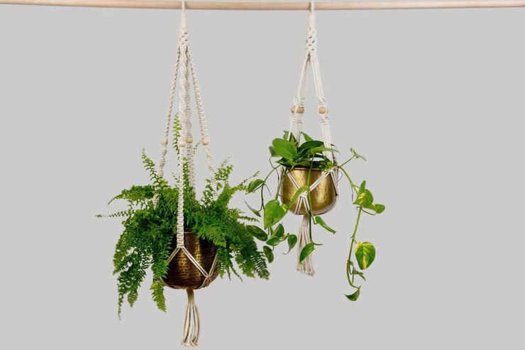 Hand Crafted 70s Macrame Plant Hanger