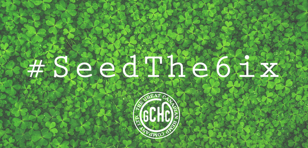 SeedThe6ix plant six hemp seeds in canada for every product sold. Post a photo of your old packaging with a new life and collect stamps towards free gift in next order.