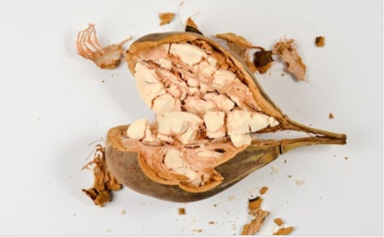 Baobab Fruit for Pre and Post-Workout Nutrition